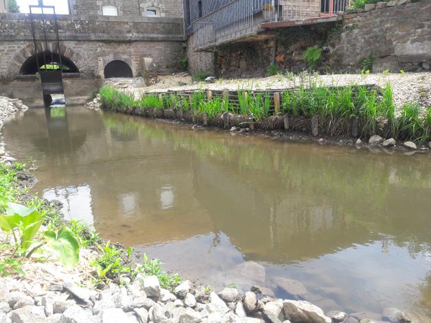 aménagement paysager rivière